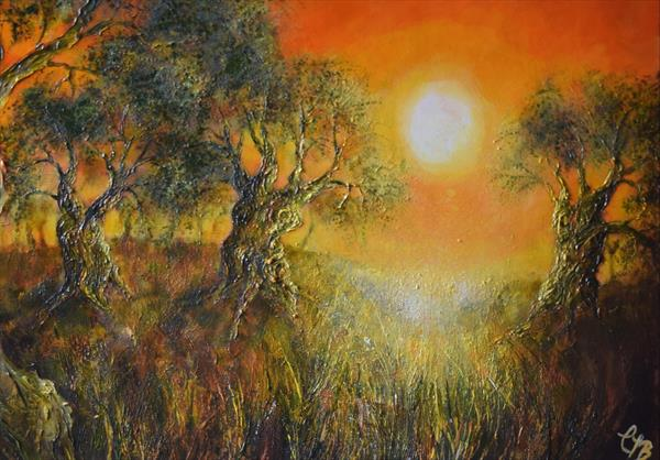 Olive Grove at Sunset by Colette Baumback