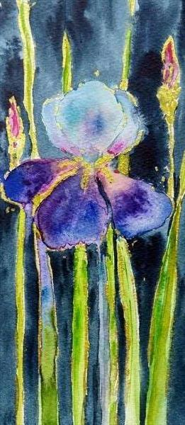 Purple Iris by Carol Renee