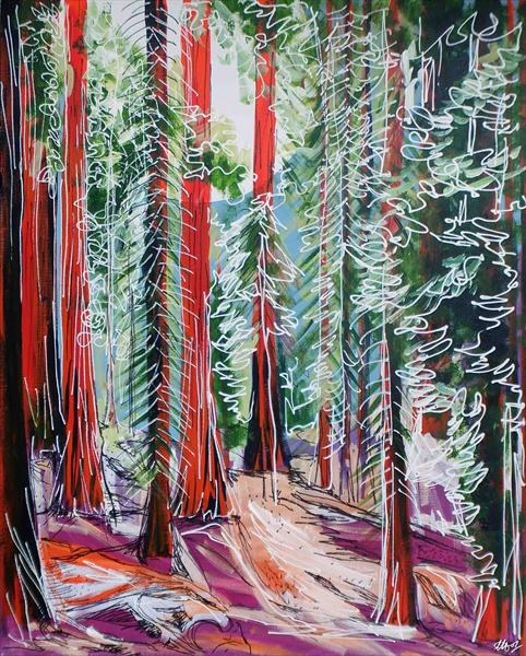 The Redwoods by Laura Hol
