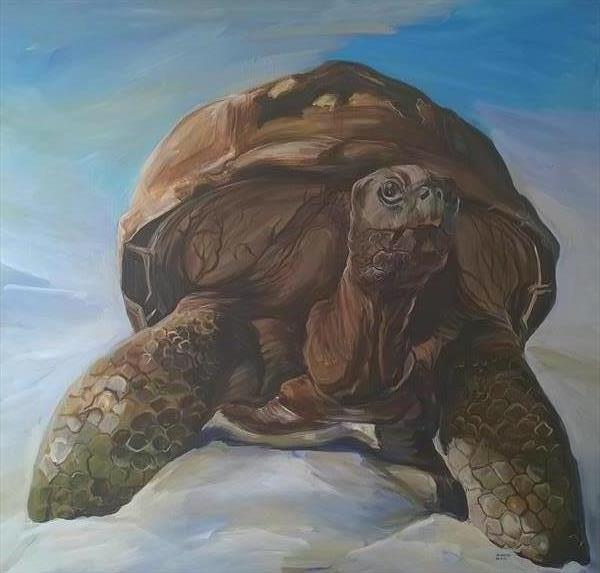 turtle  by Reneta  Bachvarova