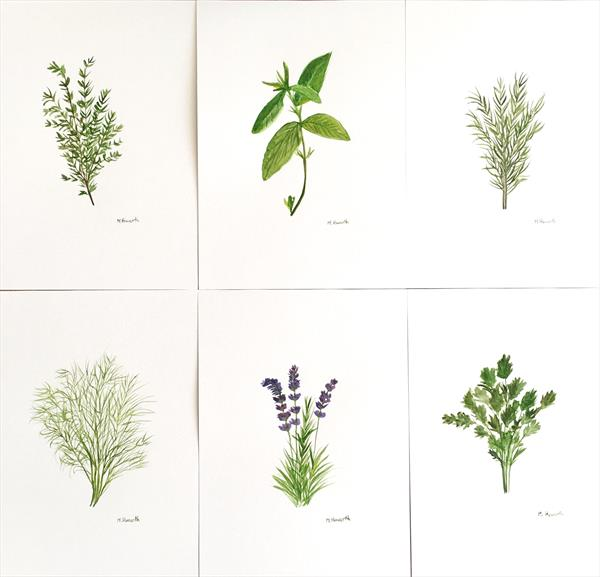 Set of 6 herbs for kitchen decor by Monika Howarth