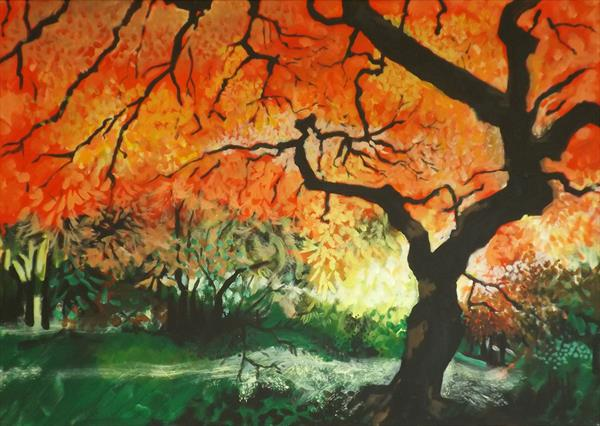 Batsford Arboretum Maple by Humph Hack
