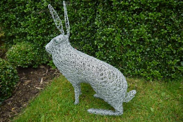Sitting hare by Paul Nicholson