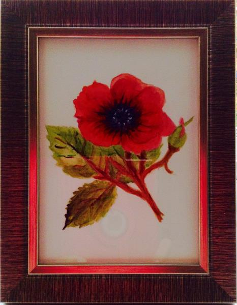 Remembrance poppy ForCANCER charity by Sheila Skilton