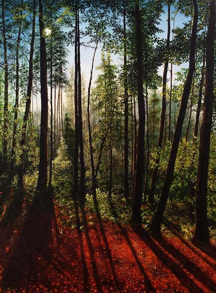 shadows in the forest by Hazel Thomson