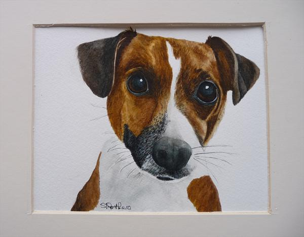 Jack Russell by Susan Prothero