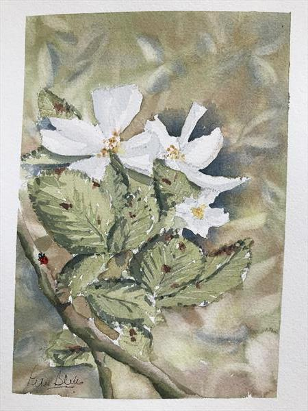 Wild roses and ladybird by Peter Blake