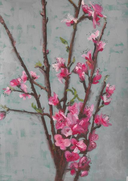 Apple Blossom by sarah hedley hedley