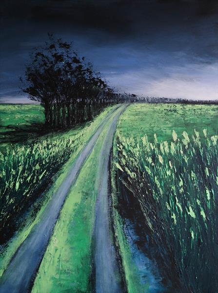 The Road after the Storm - Fields and Colors Series  by Danijela  Dan