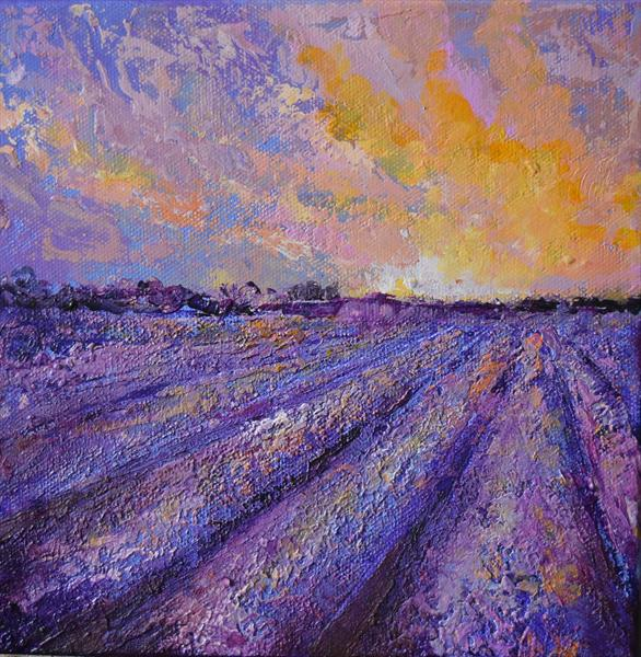 Lavender Field no2  by Colette Baumback