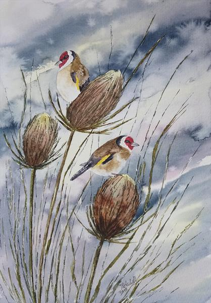 Goldfinches and teasels.  by tracy churchill