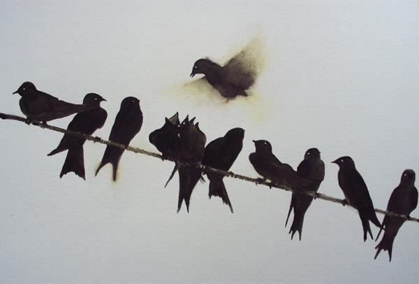Line of Swallows by Teresa Tanner