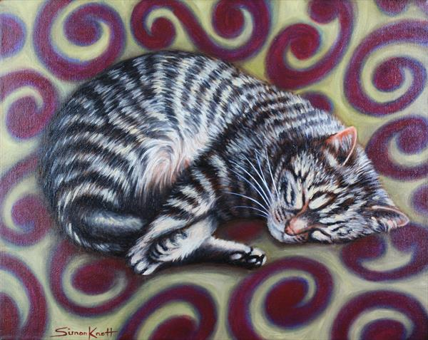 Gigi - Cat Curl  by Simon Knott