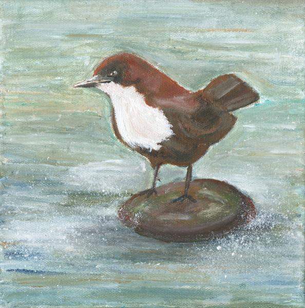 Dipper On Stone by Jess Fuller