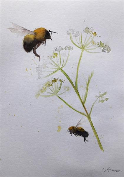 Bees & Cow Parsley by Teresa Tanner