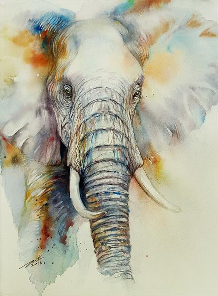 Troy the  elephant by Arti Chauhan