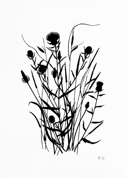 Wild Grass #2 (black edition) by Kathryn Edwards