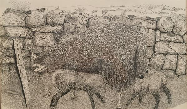 A sheep and hedgehog by Peter Cross