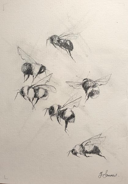 Bees in Motion - reserved for CF by Teresa Tanner