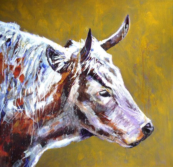 White park cow by Gill Aitken