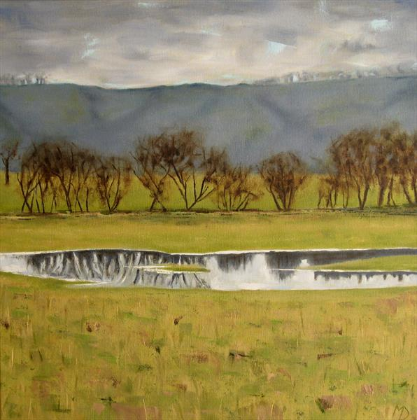 Flooded meadow across the Amber by Martin Davis