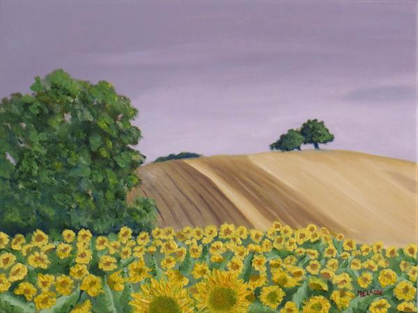 Sunflower Field by David Melrose