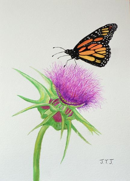 Monarch Butterfly and Thistle by Jean Tatton Jones