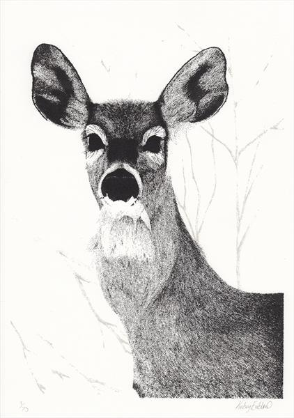 White Tailed Deer screen print by Kelsey Emblow