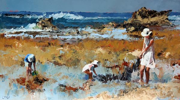Rockpool Treasures by Claire McCall