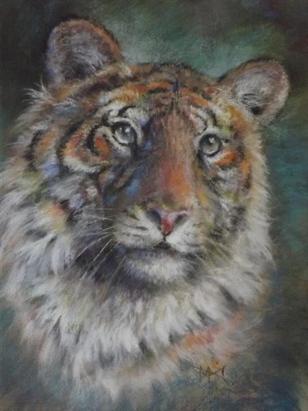 Bengal Tiger by Malcolm Menzies