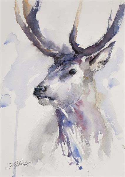 Watercolour Stag by Tomasz Mikutel