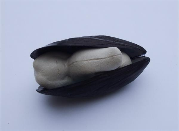 Birth - Clay Baby in Mussel Shell by Claudine Peronne