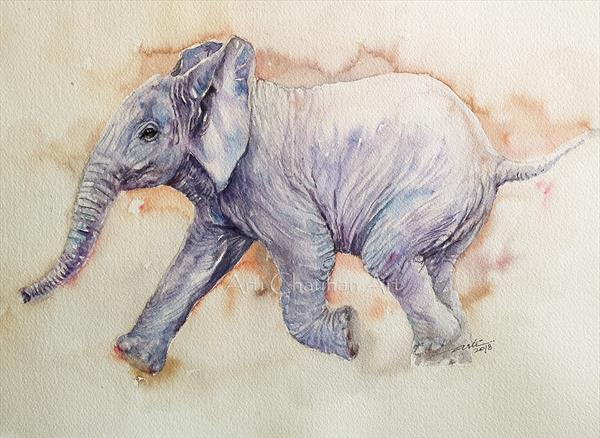 Ambi the Baby Elephant by Arti Chauhan
