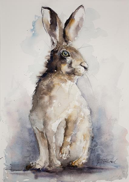 Standing Hare by Tomasz Mikutel