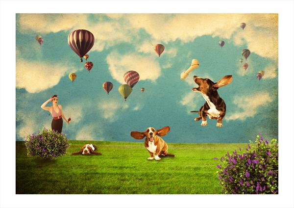 Basset Hound Fun by Angela O'Donnell