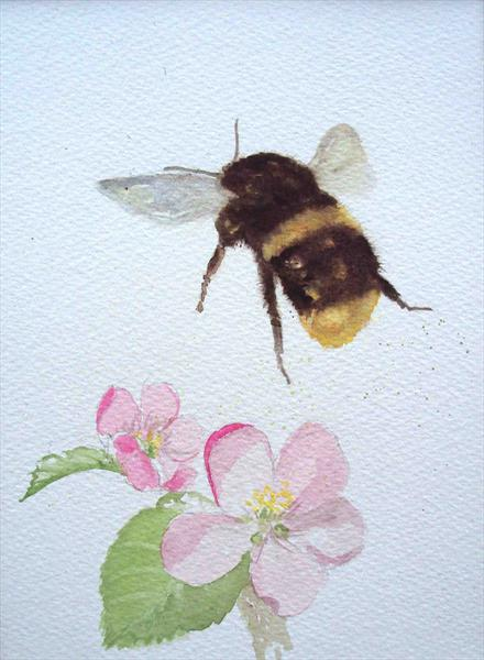 Bumble Bee & Apple Blossom