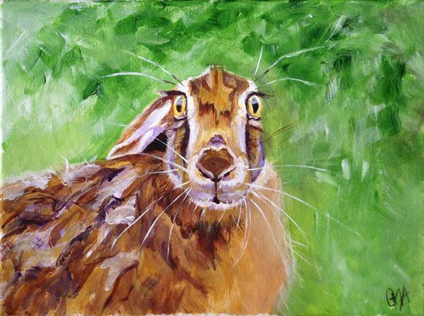 Cautious hare by Gill Aitken
