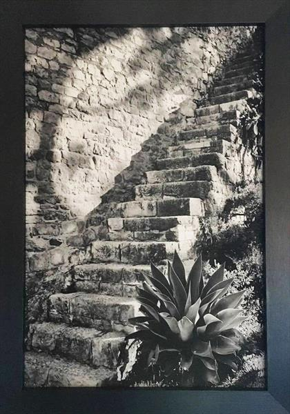 Castle Steps by Tanya Clare