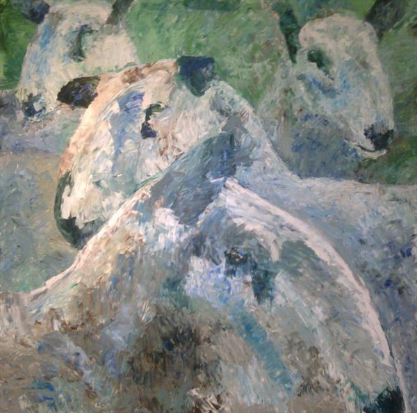 Bluefaced Leicester sheep by Matt McWhirter