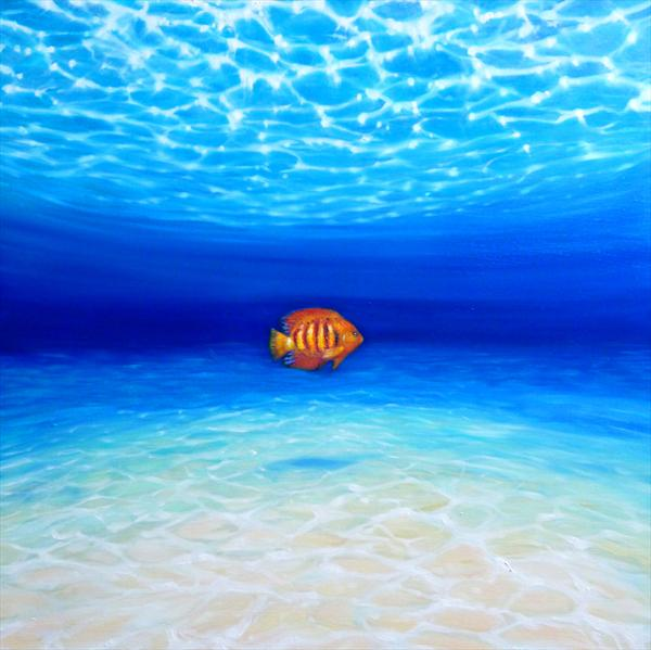 Lone Orange Fish in a Big Blue Ocean