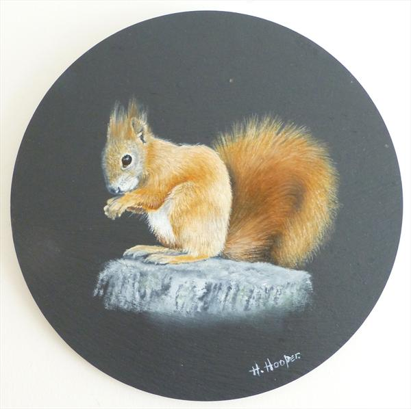 Red Squirrel by Helen Hooper
