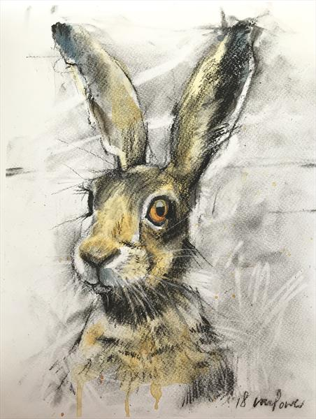 Hare #32 - Charcoal, ink & watercolour Hare drawing (2018) by Luci Power