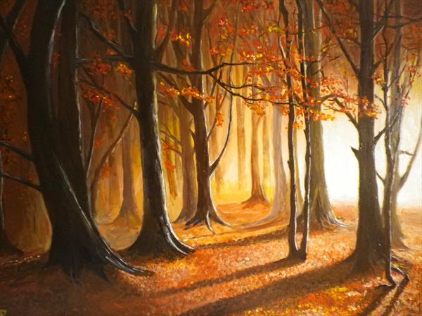Autumn in the woods by Andrew Pringle