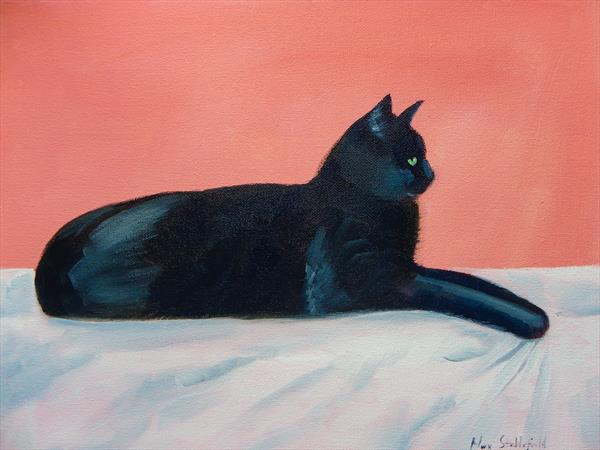 The Black Cat by Mary Stubberfield