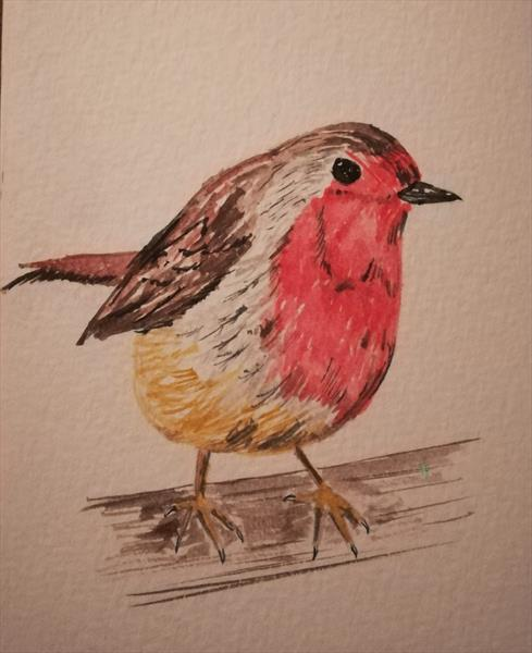 Robin by Lucy Kidson