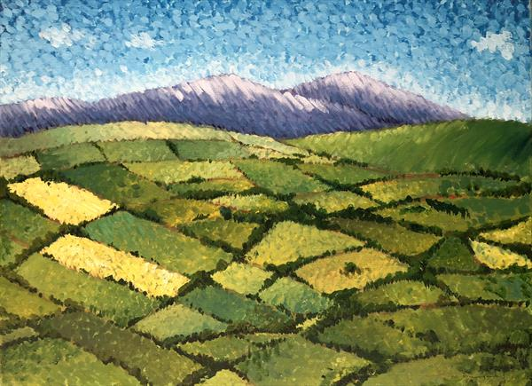 Sperrin Mountains  by Ian Wilgaus