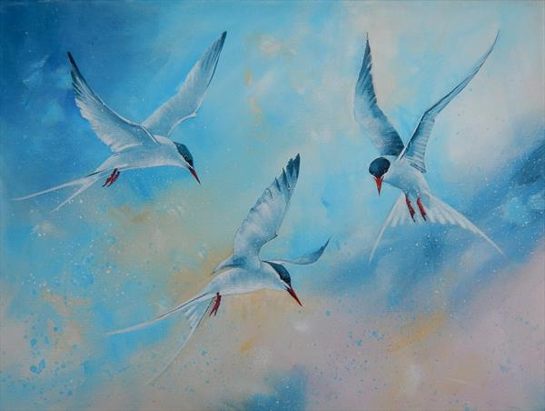 A Dance of Terns by Denise Coble