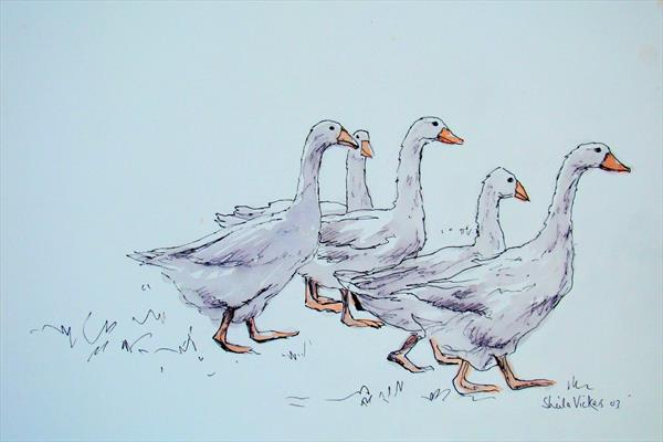 A Gaggle Of Geese by Sheila Vickers