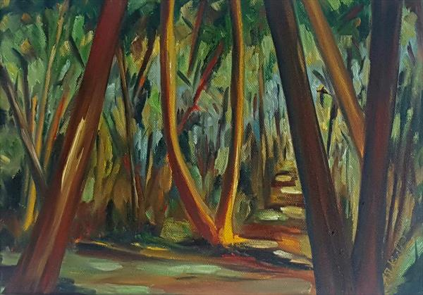 Morning sunlight through the trees by niki purcell