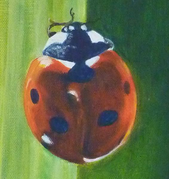 Ladybird by Jackie Whall